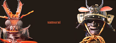 Escarabajo y samurai