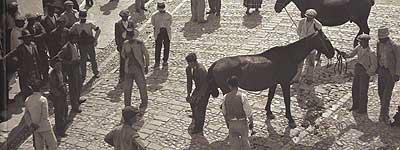 Verger: Arcos de la Frontera, 1935